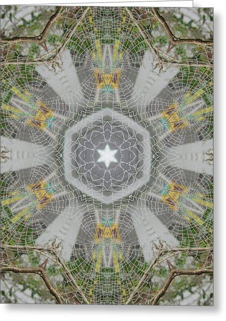 Greeting Card featuring the digital art Spider Web Star Magic by Trina Stephenson