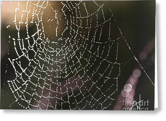 Spiderweb Green Greeting Card