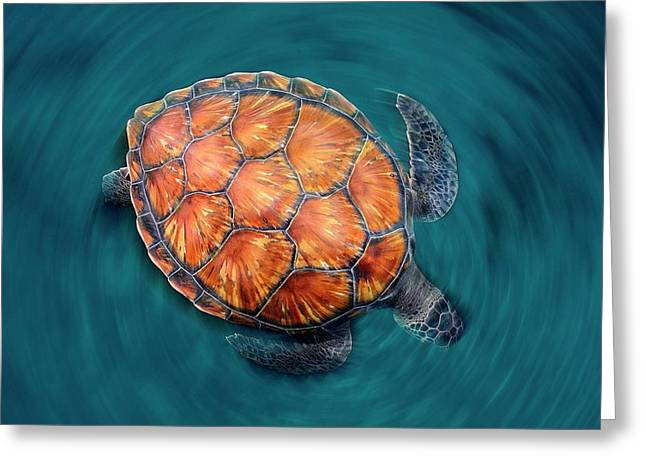 Spin Turtle Greeting Card