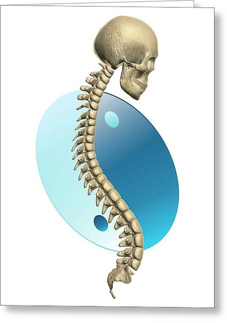 Spinal Balance Greeting Card by Harvinder Singh