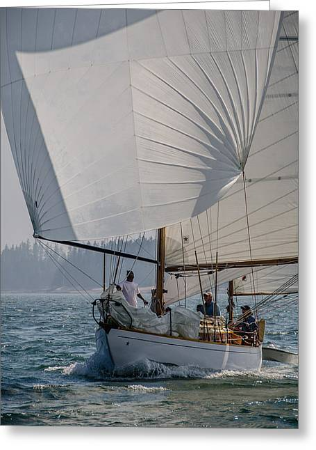 Spinnaker Run Greeting Card