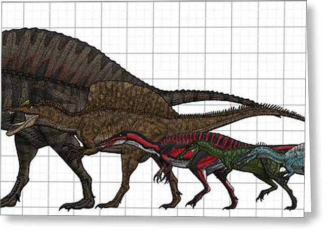 Spinosauridae Size Chart Greeting Card by Vitor Silva