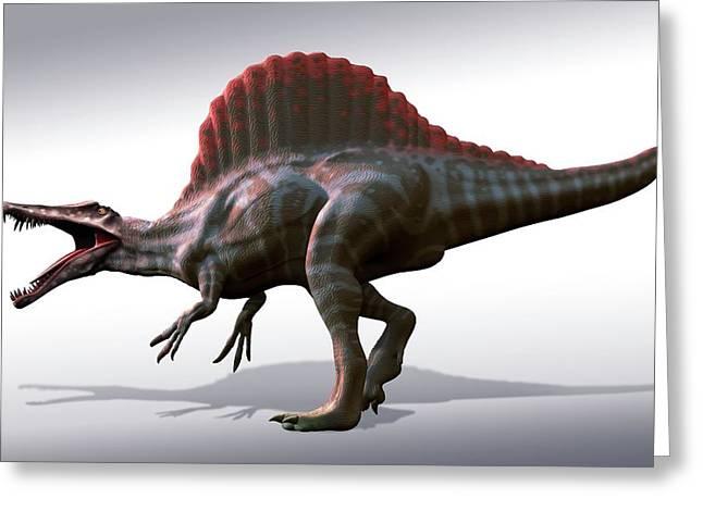 Spinosaurus Dinosaur Greeting Card by Mark Garlick
