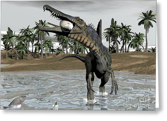 Spinosaurus Dinosaur Walking In Water Greeting Card by Elena Duvernay
