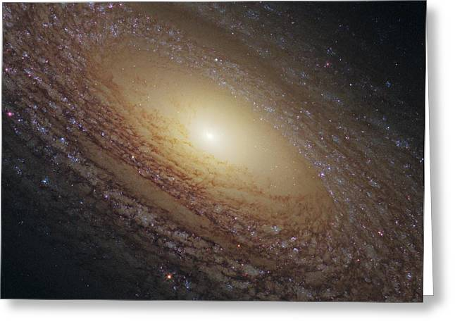 Spiral Galaxy Ngc 2841, Hst Image Greeting Card by Science Photo Library