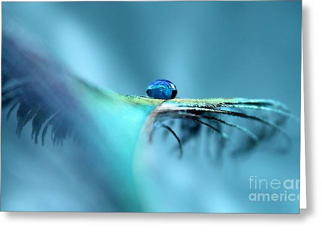 Spirit Feather Greeting Card by Krissy Katsimbras