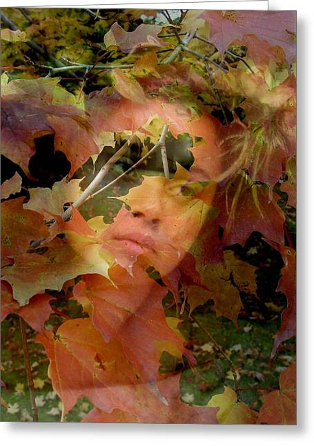 Spirit Of Autumn  Greeting Card by Jodie Marie Anne Richardson Traugott          aka jm-ART