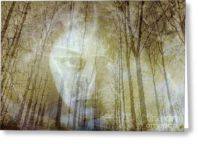 Spirit Of The Forest Greeting Card