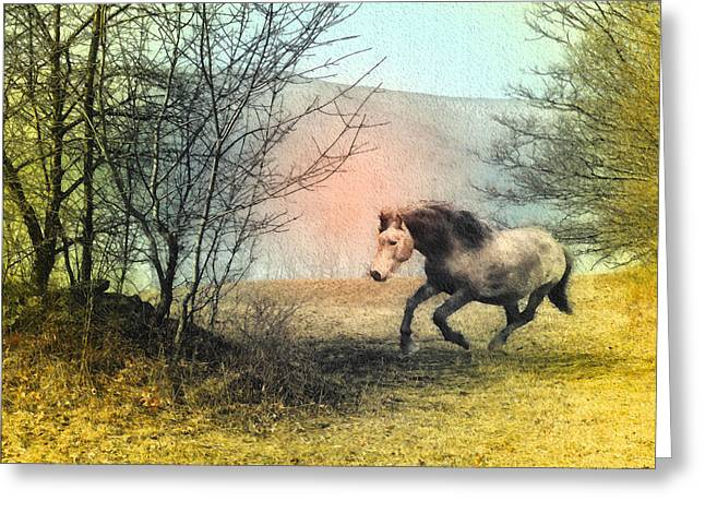 Spiritus Equus Greeting Card by Patricia Keller
