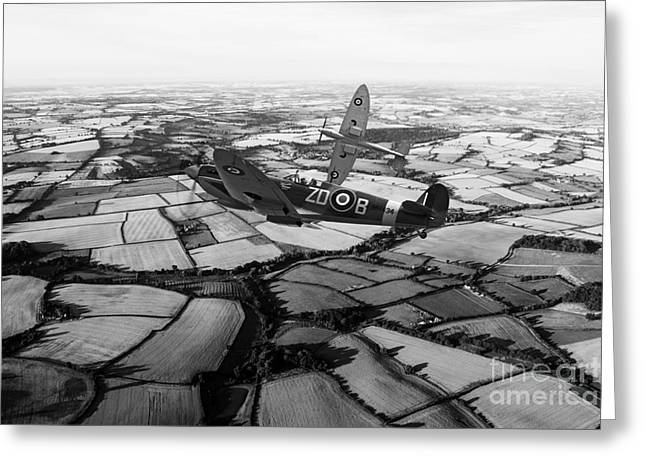 Spitfire Force - Mono   Greeting Card