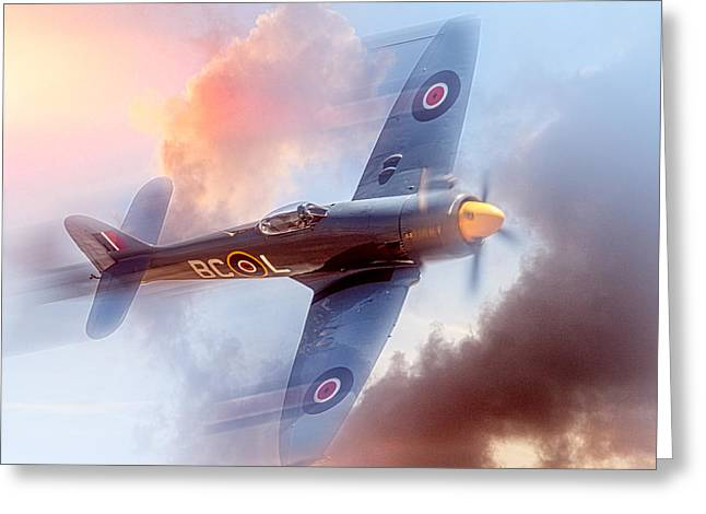 Hawker Sea Fury Greeting Card by Steve Benefiel