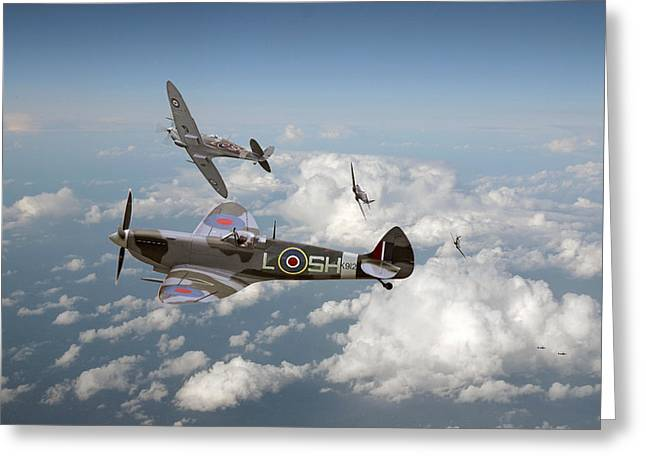 Spitfire - Tally Ho Greeting Card by Pat Speirs