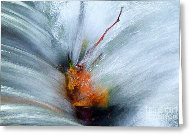 Splash O Color Greeting Card