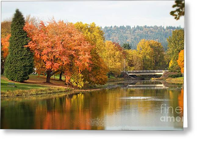 Splash Of Fall Greeting Card by Beverly Guilliams