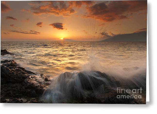 Splash Of Paradise Greeting Card by Mike  Dawson
