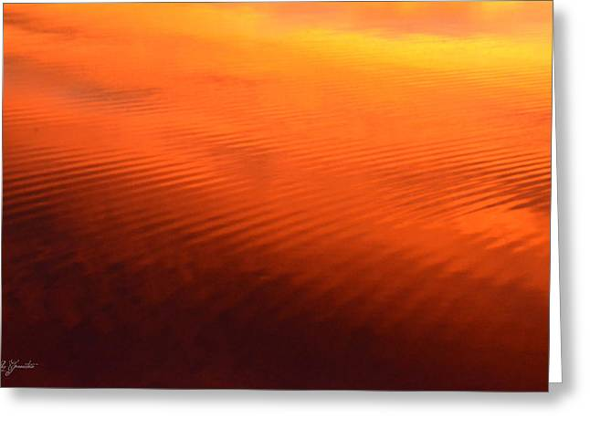 Greeting Card featuring the photograph Splash Of Sunset  by Cindy Greenstein