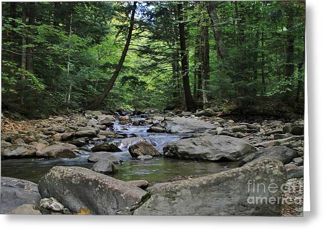 Split Rock Greeting Card by Butch Phillips