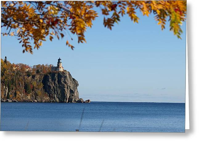 Split Rock Leaves Greeting Card by James Peterson