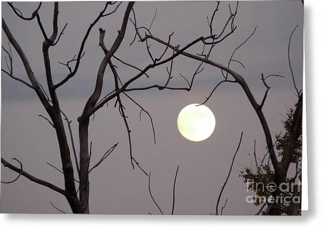 Spooky Moon Greeting Card by Deborah Smolinske
