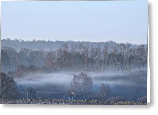 Spooky Winters Morning Greeting Card by Karen Grist