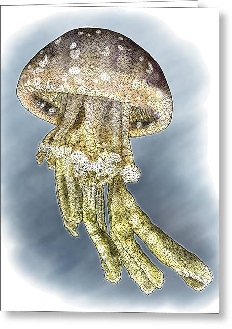 Spotted Jellyfish Greeting Card by Roger Hall