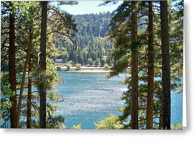 Forrest Mountain Trees Lake Scenic Photography Lake Gregory San Bernardino California - Ai P. Nilson Greeting Card
