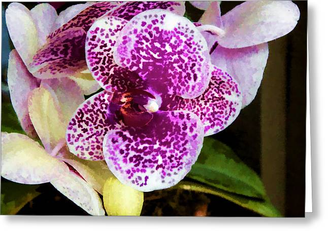 Greeting Card featuring the digital art Spotty Orchid by Photographic Art by Russel Ray Photos