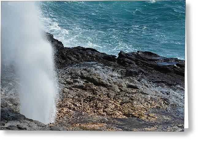 Spouting Horn Greeting Card by P S