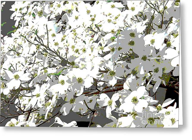 Spring 8 Greeting Card by Shirley Sparks