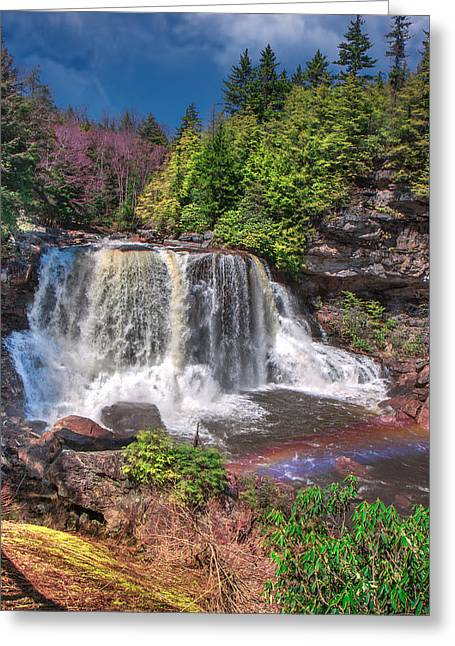 Spring At Blackwater Falls Greeting Card