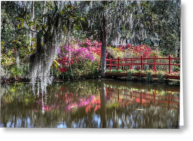 Spring At Magnolia Plantation 1 Greeting Card