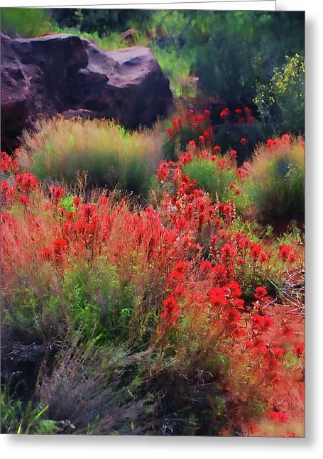 Spring Blooms Greeting Card by Barbara Manis
