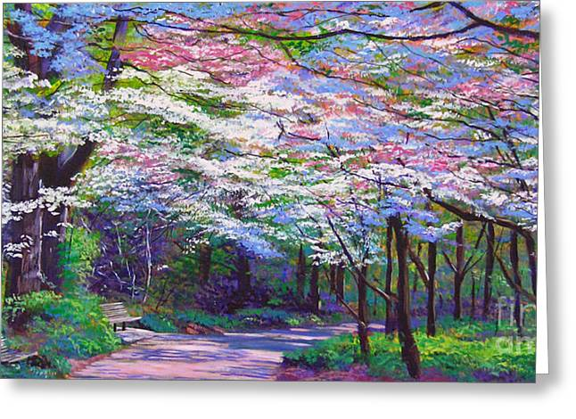 Spring Blossom Pathway Greeting Card