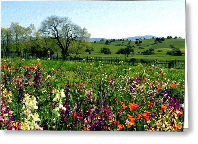 Spring Bouquet At Rusack Vineyards Greeting Card