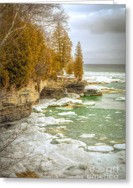 Greeting Card featuring the photograph Spring Breaking Through At Cave Point by Mark David Zahn