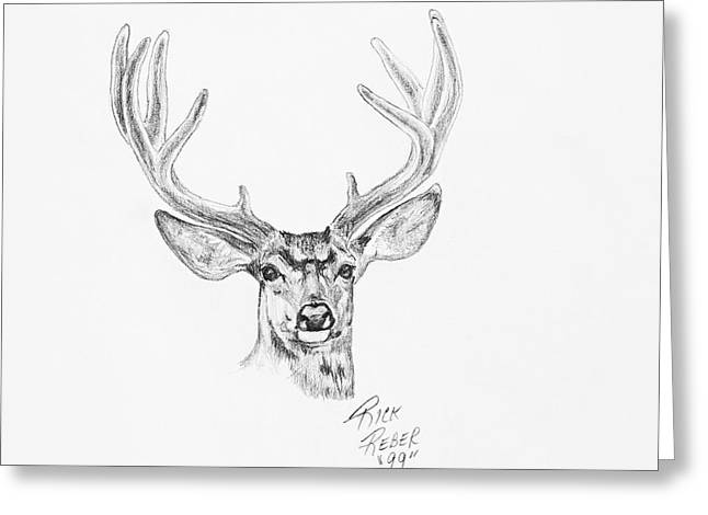Spring Buck Greeting Card