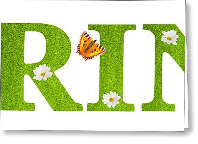 Spring Butterflies Greeting Card by Amanda Elwell