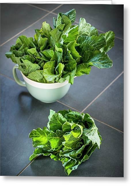 Spring Cabbage Greeting Card