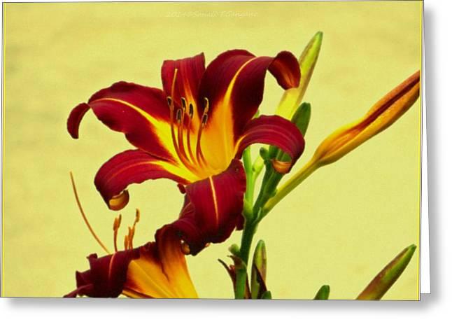 Spring Candor Greeting Card by Sonali Gangane