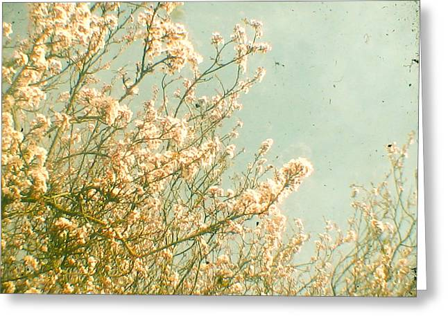 Spring Greeting Card by Cassia Beck