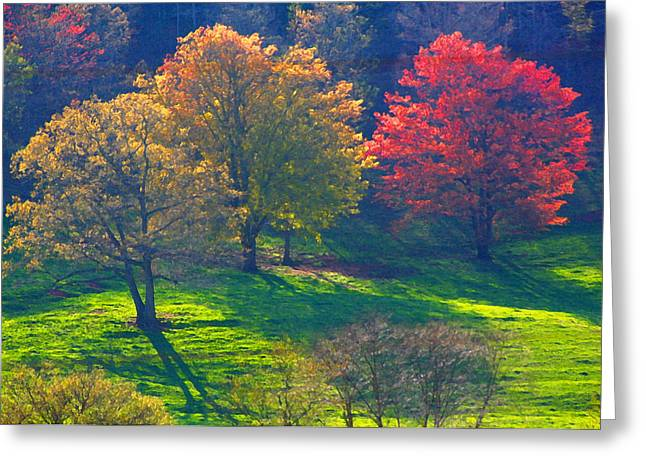 Spring Color Just Down The Road Greeting Card by Alan Olansky