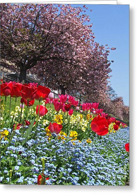 Spring Colours - Edinburgh Greeting Card