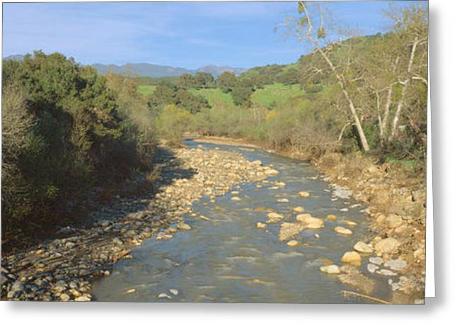 Spring Creek In Upper Ojai, California Greeting Card by Panoramic Images