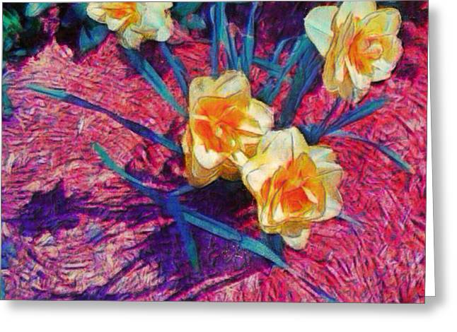 Spring Daffodils On Red - Square Greeting Card
