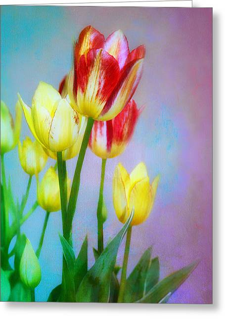 Spring Dance - Tulips  Greeting Card