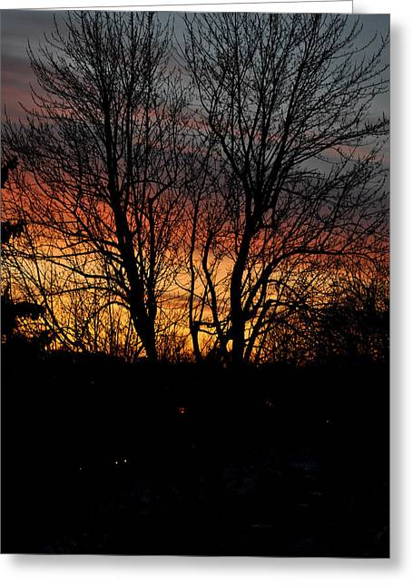 Spring Dawn Greeting Card by Frederico Borges