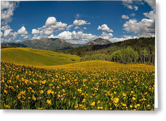 Spring Delight Greeting Card by Leland D Howard