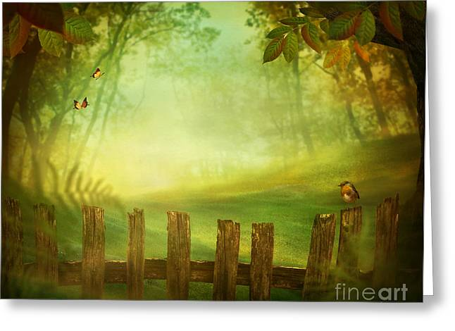 Spring Design - Forest With Wood Fence Greeting Card