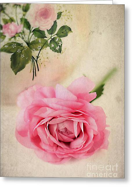 Spring Elegance Greeting Card by Darren Fisher