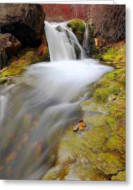 Spring Falls Greeting Card